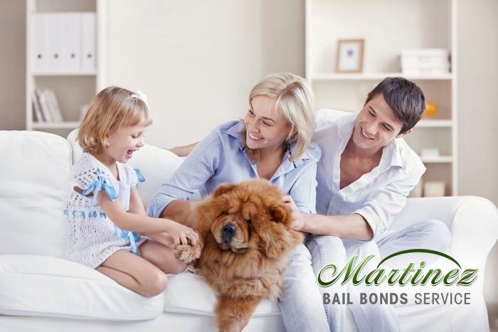Albany Bail Bond Store