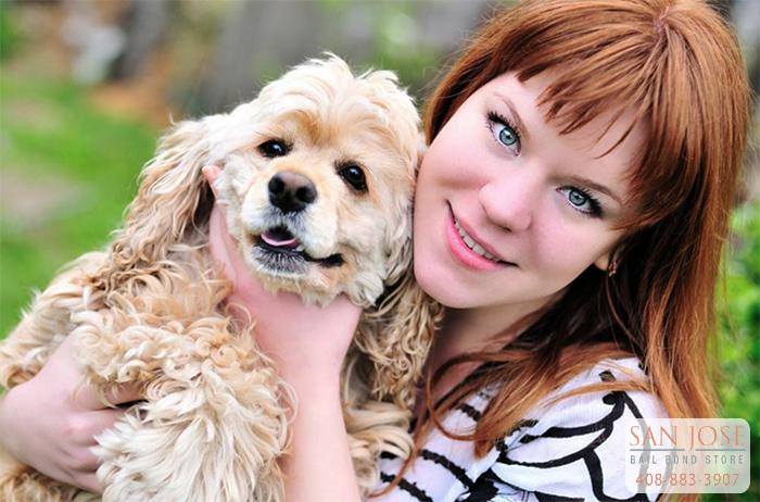 San Jose Animal Rescue Scams
